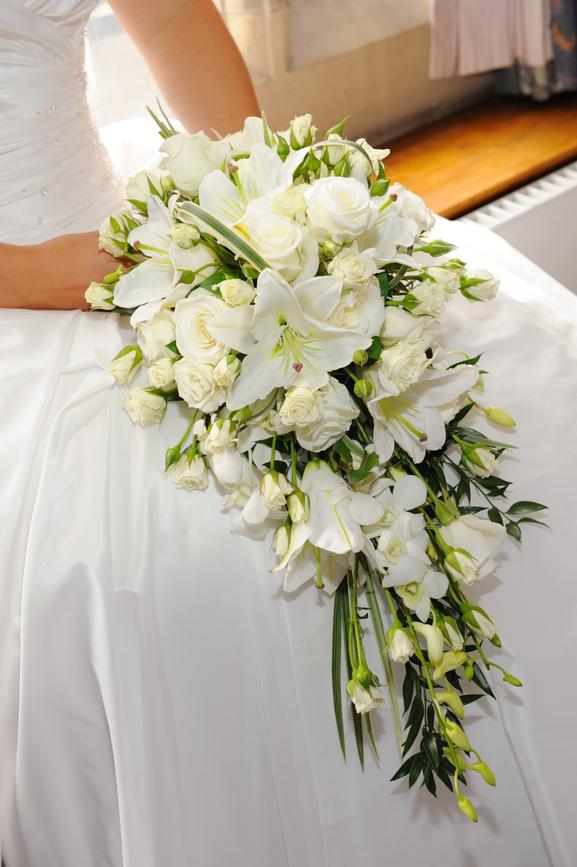 Bridal Flower Plants : Bridal bouquets flowers by kath
